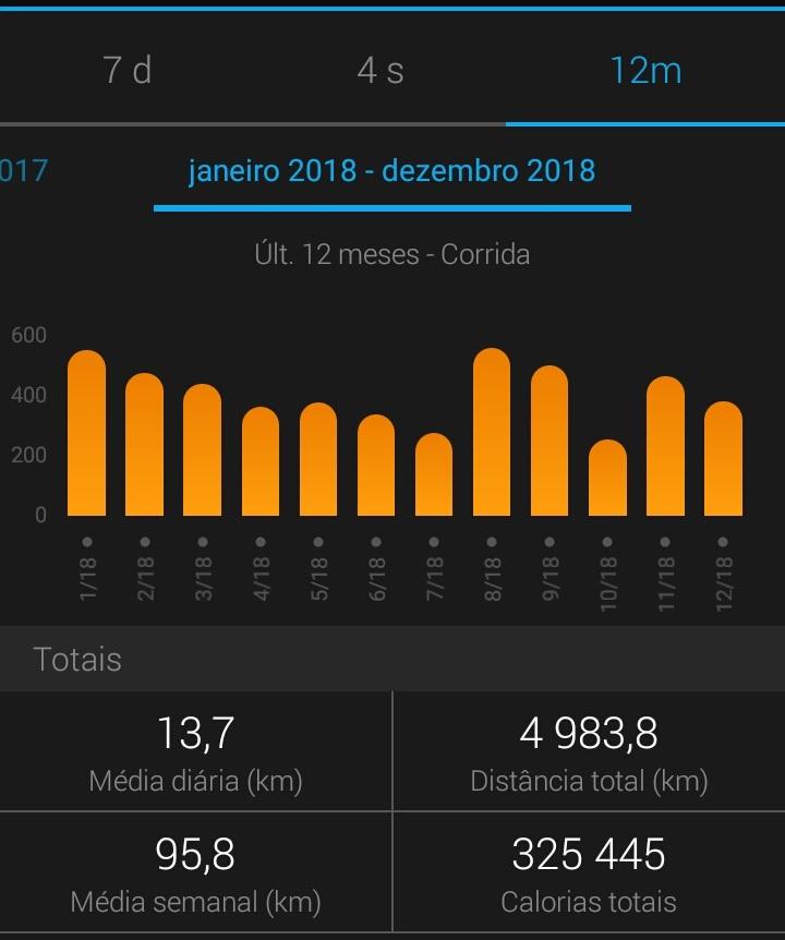 Total Quilómetros 2018 - Garmin Connect